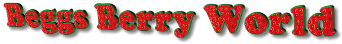 Beggs Berry World Company Title from Photoshop Graphic.