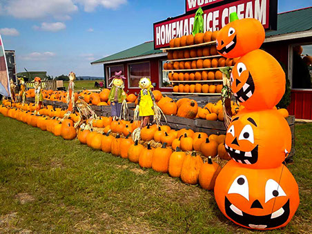 Pumpkins of all sizes delight the children at Halloween at Beggs Berry World.